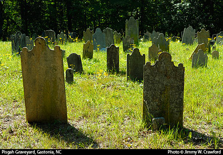 Graveyard of the Pisgah ARP church